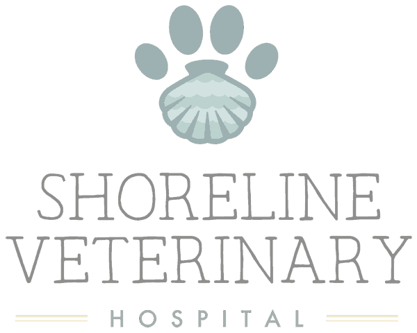 Shoreline Veterinary Hospital